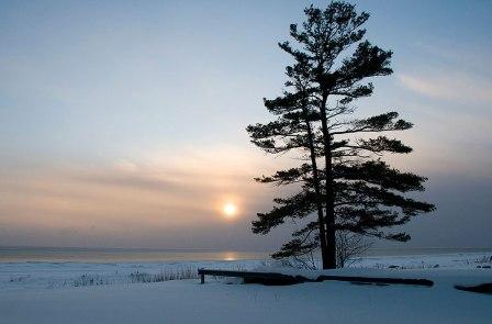 Winter (photo by Jimwest)