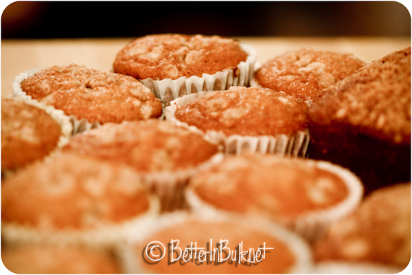 Pumpkin Muffins  – Food Photographer, I am Not