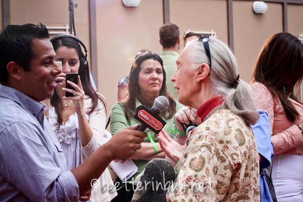 Jane Goodall being interviewed on the red carpet