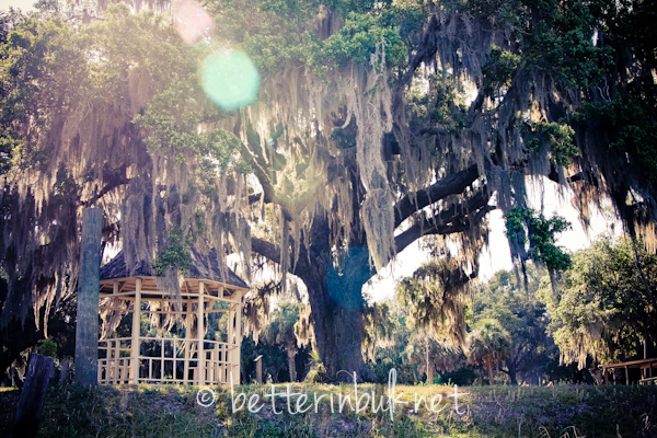 5 Reasons Kissimmee Florida is the Perfect Destination for a Family Vacation This Winter (personally, reason #1 is my favorite!). Planning a family vacation? Be sure to check out Kissimmee, Florida!