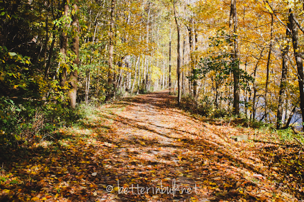 GAP trail - Great Allegheny Passage