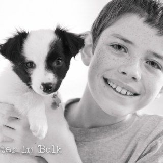 Happiness in black and white - puppies