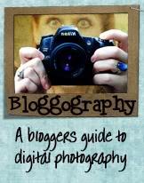 Bloggography Challenge – Aperture