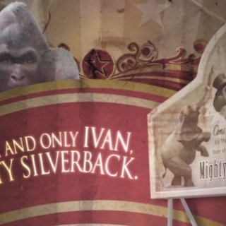 The One and Only Ivan – Announcing the 2013 Newbery Medal Winner!