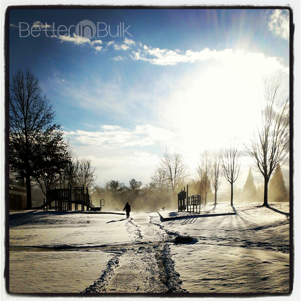 morning inspiration snow day winter photo