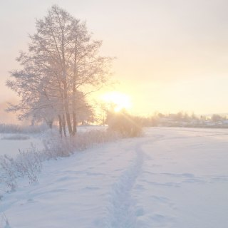 Enjoy the Moment, With Snow and All
