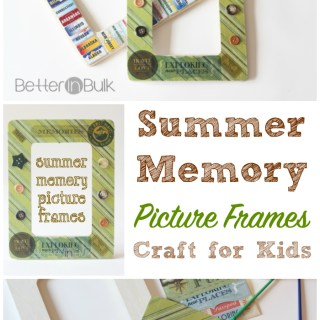 Summer memory picture frame craft for kids