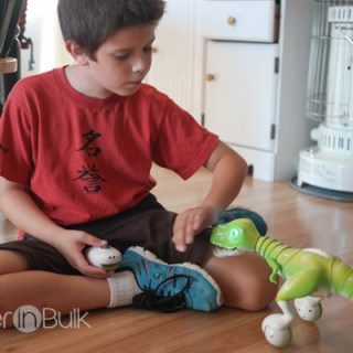 Zoomer Dino by SpinMaster Toys