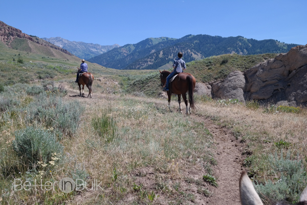 Horseback riding in Jackson Wyoming