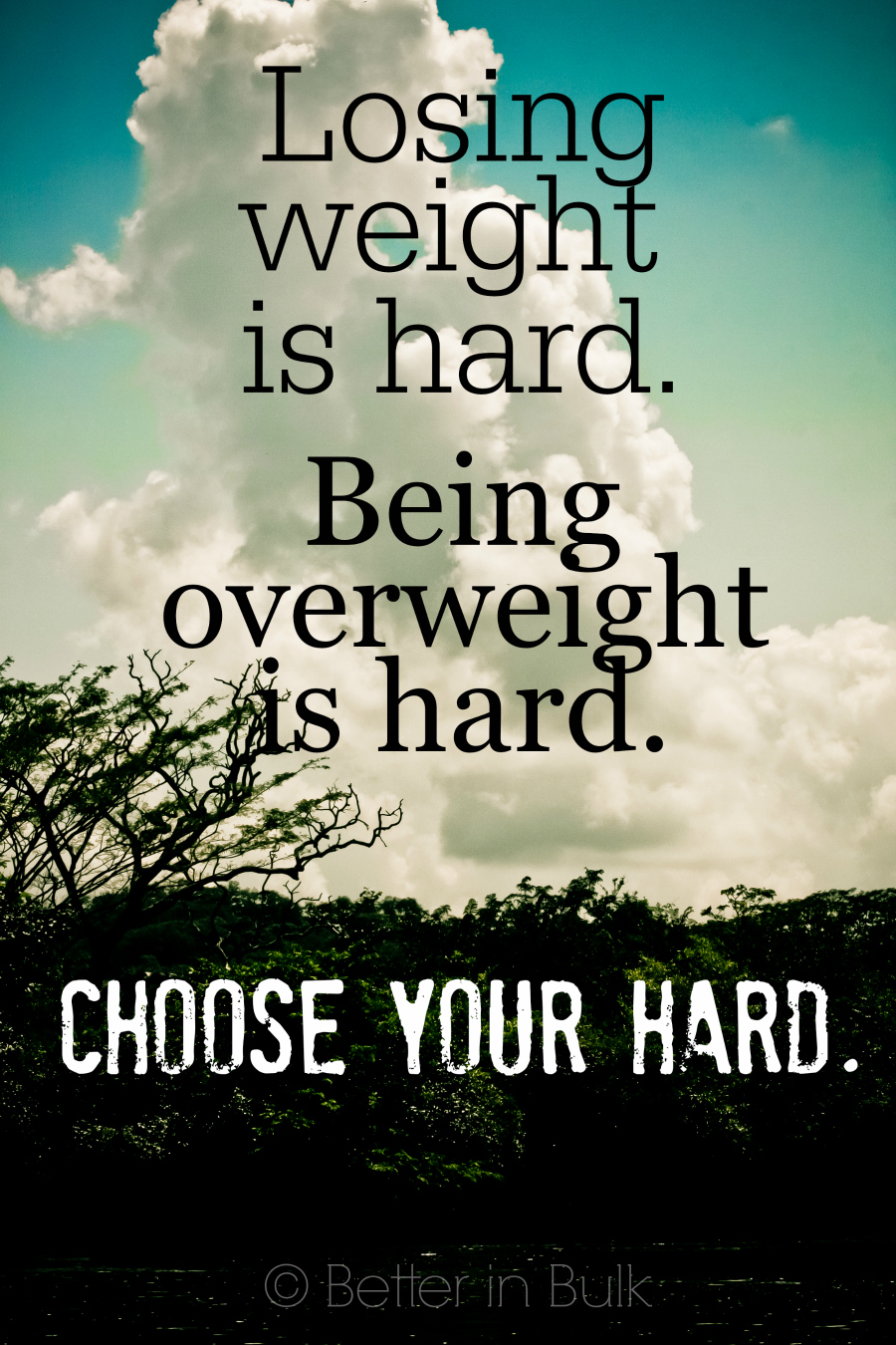 losing weight is hard....choose your hard #WeightWatchers