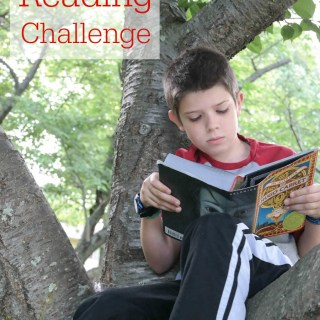 Scholastic summer reading challenge