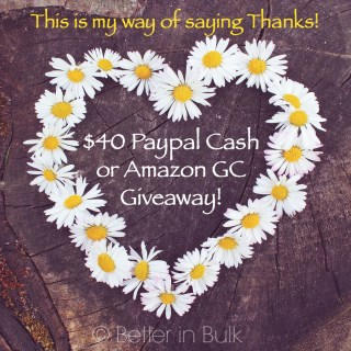 Thank you! $40 Paypal Cash or Amazon Gift Card Giveaway