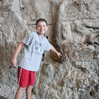 Dinosaur National Monument #PSF
