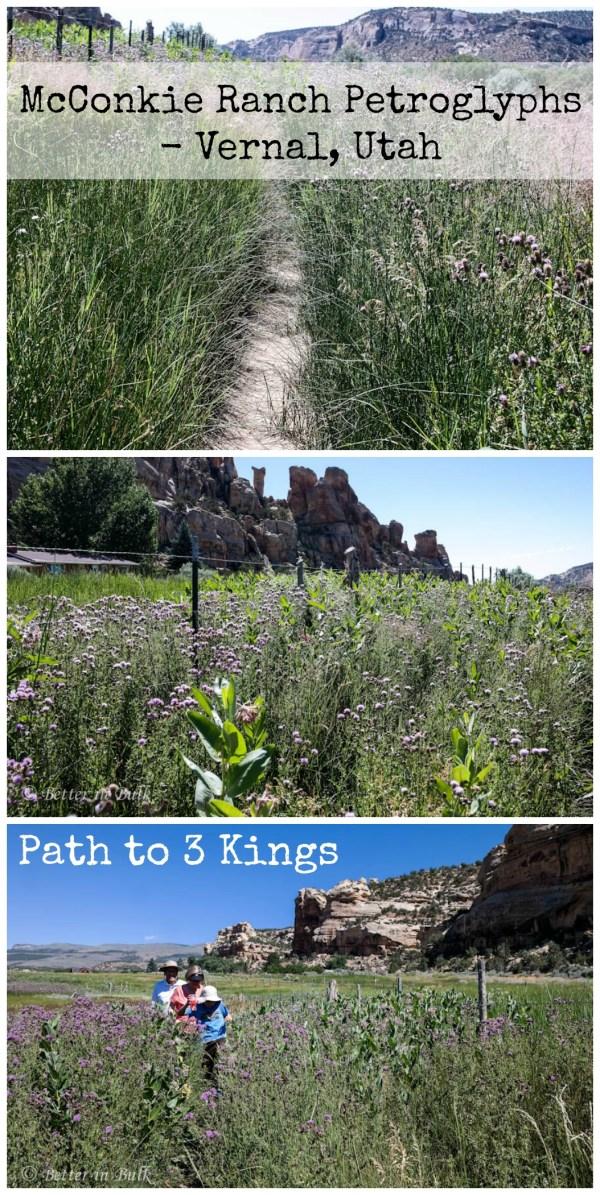 McConkie Ranch Petroglyphs - Vernal, Utah Path to 3 Kings