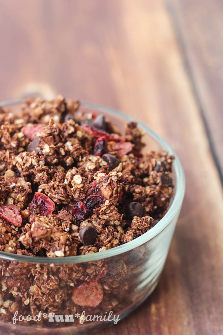 Homemade Dark Chocolate Granola with Cranberries recipe from Food Fun Family