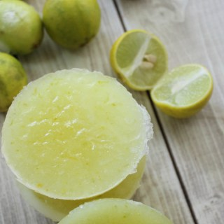 Lime & Coconut Sugar Scrub Bars