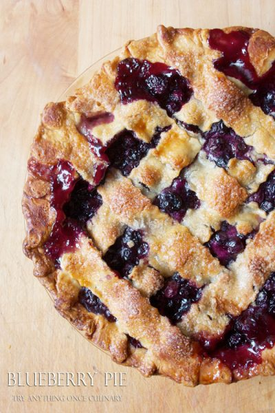 blueberry-pie-12
