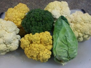 Two types of Cauliflower, Broccoil, and Cabbage