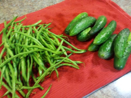 first haricots verts and some cucumbers