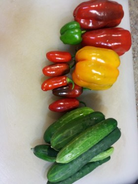 Bell & jalapeno peppers and cucs