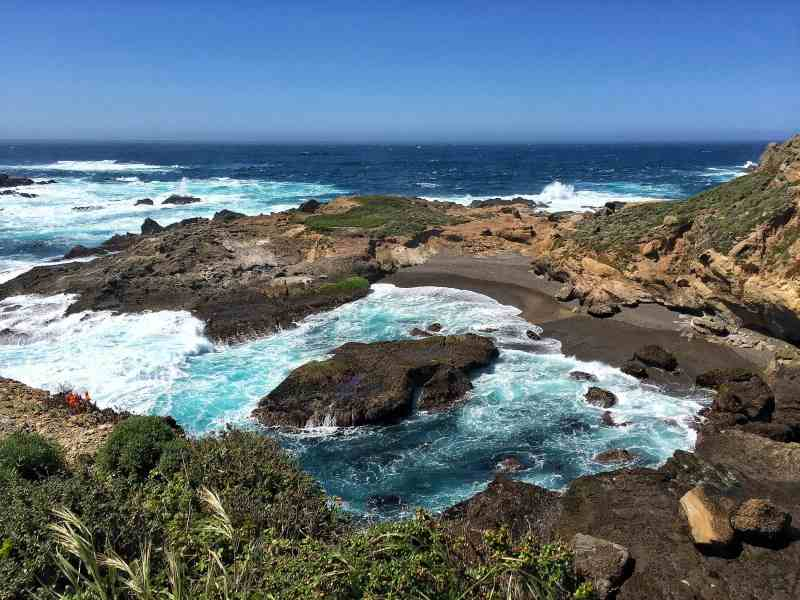 Foodicles Point Lobos 6
