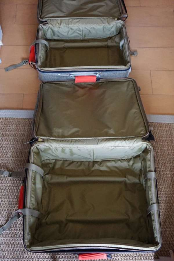 Foodicles Travel Cubes 2