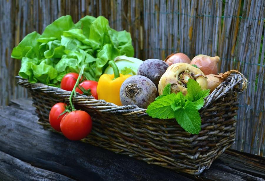 légumes du Frontonnais