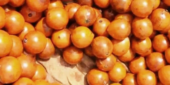 African Cherry-Agbalumo