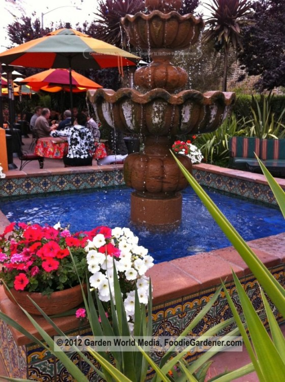 Outdoor dining patio at Casa de Bandini with fountain and blue pool