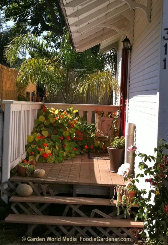 Door leading to the outdoor kitchen area foodie gardener