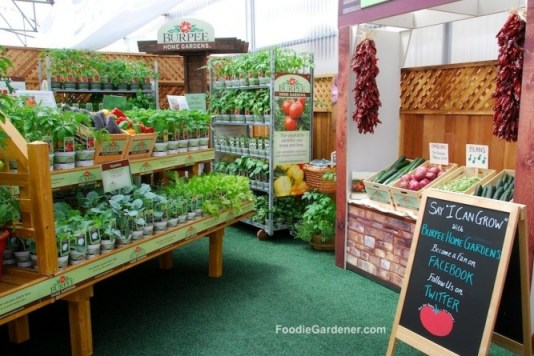 Vegetable Plant Display Burpee Home Garden Varieties by FoodieGardener