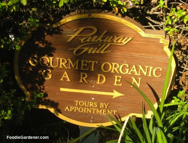 sign restaurant chef gourmet organic garden