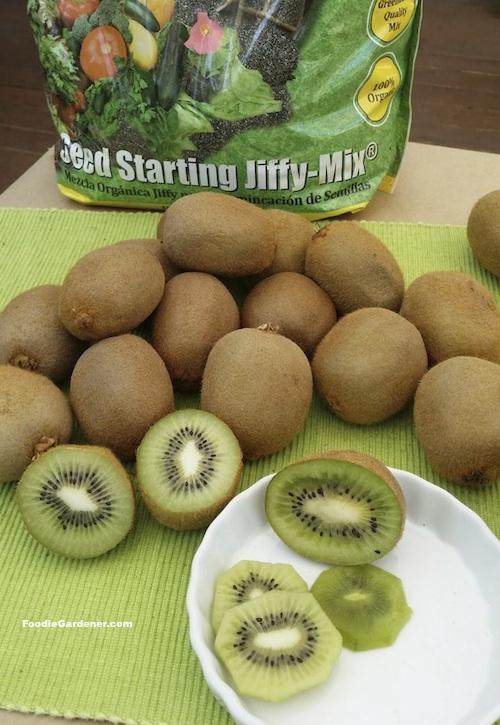 what to do with kiwi fruit