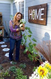 shirley bovshow foodie gardener grow food with style