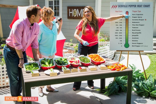 foodie gardener edible garden expert and designer shirley bovshow with mark steines cristina ferrare explaining scoville pepper heat chart home and family show hallmark channel
