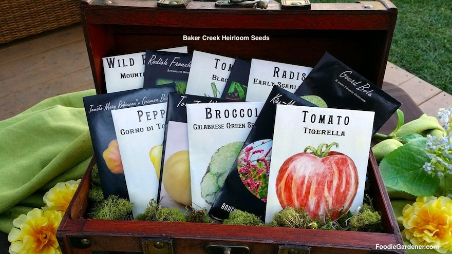 WIN BAKER CREEK HEIRLOOM SEEDS SHIRLEY BOVSHOW HOME AND FAMILY