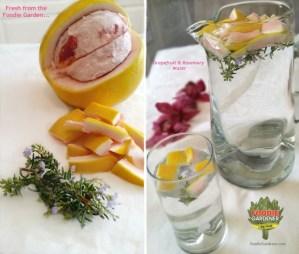fresh from the foodie garden grapefruit rosemary water foodiegardener.com