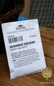 golden-egg-hybrid-summer-squash-seed-packet-burpee-plants-foodie-gardener-blog