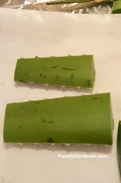 cut-aloe-vera-leaves-in-small-pieces-before-peeling-to-extract-aloe-vera-gel-foodie-gardener-blog