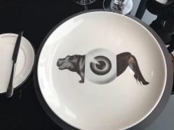 Hippo plates