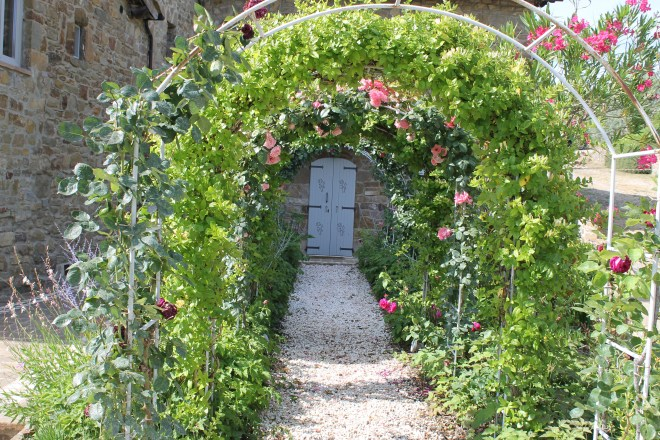 The rose garden at Fattoria di Montemaggio