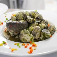 Recette d'un plat créole typique: Blaff de burgots par le chef Alain Jarny