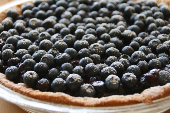 Dorothys-Fresh-Blueberry-Pie