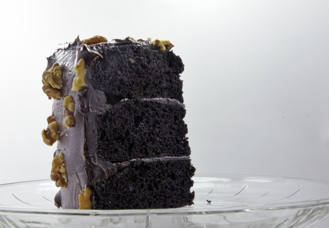 chocolate-cake-145870541132j