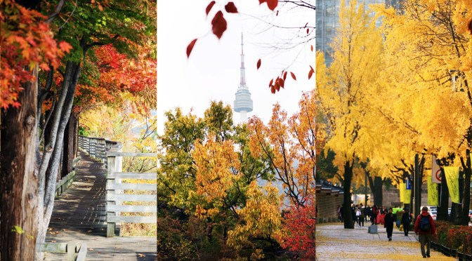 [KOREA] AUTUMN IN SEOUL –  Fall Foliage Destinations and Places to Visit
