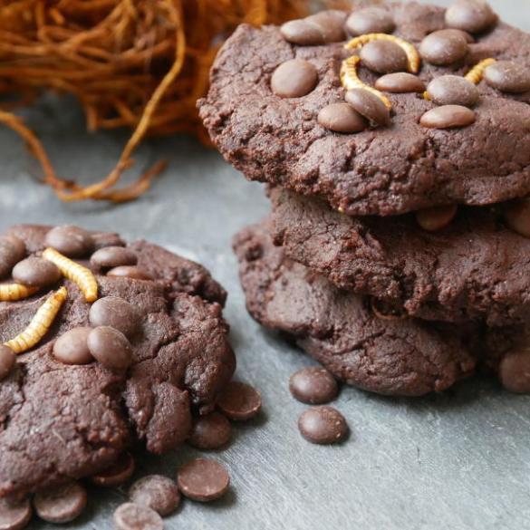 Chocolate Cookies mit Buffalowurmmehl