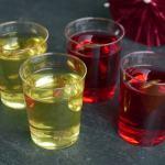 Jelly Shots mit Mehlwurm