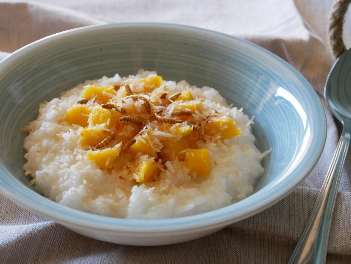 Mango-Kokosmilchreis mit Mehlwürmer-Topping
