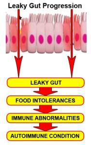 leaky_gut_progression