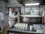 Job 48 - Cheese Making - Palermo